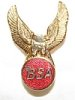 Badge, lapel, BSA , eagle over BSA in red circle, gold